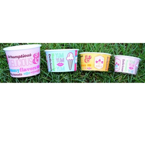 Ice Cream Containers Various Sizes