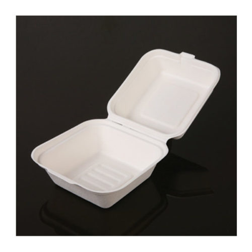 Bagasse Plates and Containers
