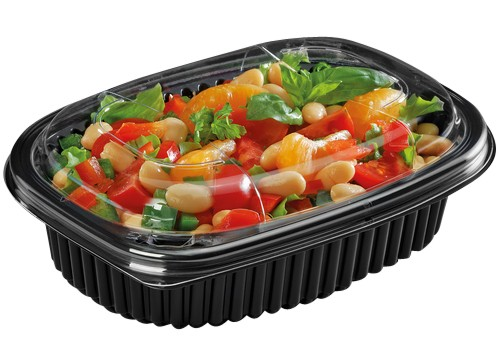 Microwaveable Containers 1, 2 and 3 compartments